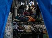 Indonesia thành tâm dịch thế giới: 'Virus nhân lên, đội ngũ y tế giảm xuống'
