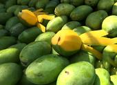 10 loại trái cây lành mạnh siêu bổ dưỡng