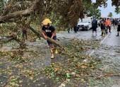 Philippines sơ tán gần 1 triệu dân khi siêu bão Goni sắp đổ bộ