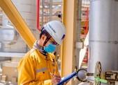 Giá dầu về 20 USD/thùng, PVN có thể cắt, giảm lương