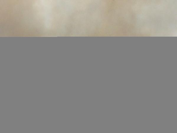 Bãi dăm gỗ trong Cảng Quy Nhơn bốc cháy dữ dội