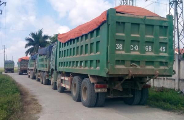 Số xe tải vi phạm tải trọng bị Thanh tra giao thông tỉnh Thanh Hóa bắt giữ sáng 12 - 9 - Ảnh: Hà Đồng.