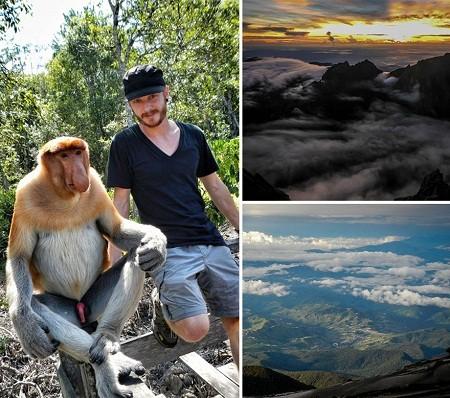 Những chú khỉ ở đảo Borneo thuộc vùng biển Đông Nam Á