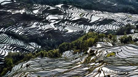 Thị trấn Nguyên Dương, Trung Quốc