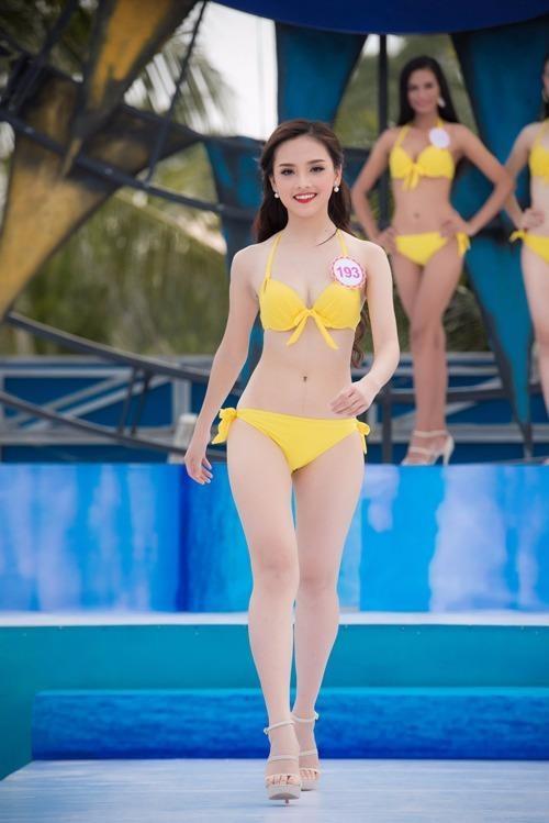 Trần Tố Như, sinh năm 1997, quê Thái Nguyên