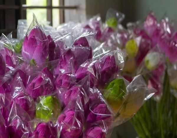 Hoa sen là mặt hàng được nhiều người dân và du khách chọn mua.