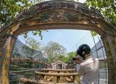 Cầu cổ và hiếm nhất Việt Nam được tháo dỡ để trùng tu