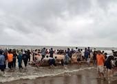 Tìm thấy 3 thi thể học sinh gặp nạn trên biển ở Thanh Hóa
