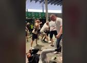 Hooligan Anh đánh dã man CĐV Ý tại sân Wembley