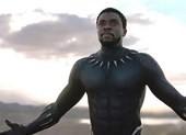 Điểm mặt bốn bộ phim đã thâu tóm Oscar 2019