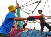 Chùm ảnh: Ngư dân cảng cá Bình Định tất tả chạy bão số 9