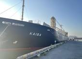Nóng: Đoàn tàu số 2 của metro 1 chính thức cập cảng Khánh Hội