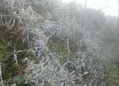Miền Bắc chìm trong giá lạnh, nhiều tỉnh còn 8,6 độ
