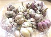 Những thực phẩm lành mạnh giúp giảm cân mùa Tết