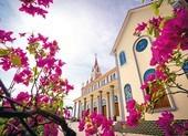 Tòa Giám mục Phan Thiết khuyến khích thánh lễ trực tuyến