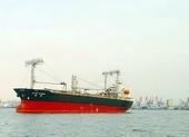 Cứu được 10 thuyền viên tàu Panama chìm gần đảo Phú Quý