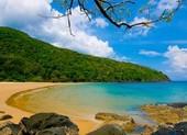 Hàng loạt đường bay kích cầu đến Côn Đảo