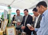 Chủ tịch Quảng Nam gỡ vướng cho thanh niên khởi nghiệp
