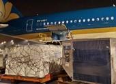 Vietnam Airlines tăng thị phần chở hàng xuất nhập khẩu