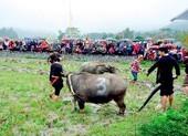 Du lịch năm mới: Đà Lạt, Sa Pa được tìm kiếm nhiều nhất