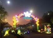 Khai mạc chợ hoa xuân Bình Điền tết Canh Tý 2020