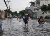 Mưa lớn, đường ngập, cây ngã khắp nơi ở TP.HCM