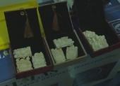 Cất giấu gần 700 sản phẩm trang sức từ ngà voi trong nhà