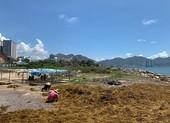 Nhùng nhằng thu hồi dự án lấn biển trái phép ở Nha Trang