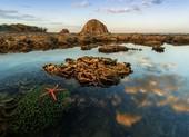 Phú Yên đẹp lạ lùng dưới góc máy của người xứ Nẫu