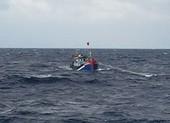 Bình Định: 4 chủ tàu cá bị phạt 3,6 tỉ đồng