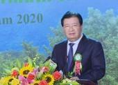 Ngành lâm nghiệp trồng 1 tỉ cây xanh trong 5 năm tới