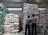 Chuyển công an điều tra 10,4 tấn phân bón không đạt chất lượng