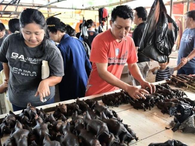 Các loài động vật hoang dã được bày bán công khai tại khu chợ Tomohon, Bắc Sulawesi, Indonesia. Ảnh: BLOOMBERG