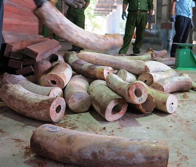 Đà Nẵng: Kiểm điểm người đứng đầu nếu cấp dưới tham nhũng