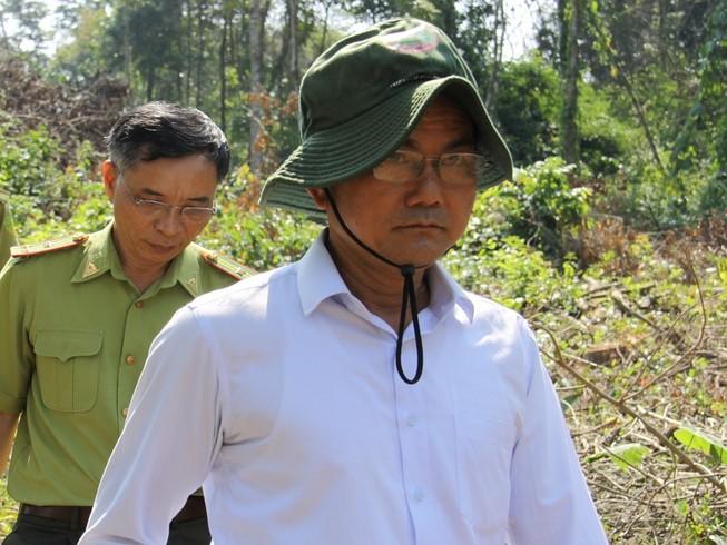 Lãnh đạo khu bảo tồn ở Đồng Nai nói về việc cây rừng bị hạ