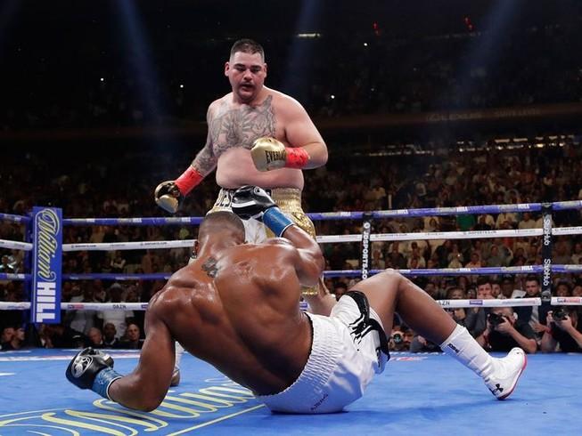Joshua có thể chết trên võ đài nếu tái đấu Andy Ruiz