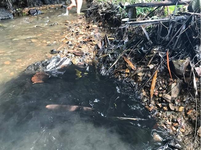 Chủ tịch Hà Nội: Nước ăn của dân nhiễm dầu thải