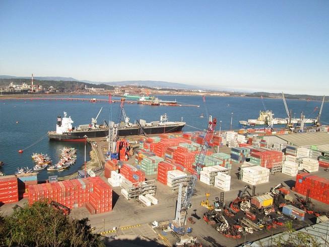 Thanh tra toàn diện việc cổ phần hóa tại cảng Quy Nhơn