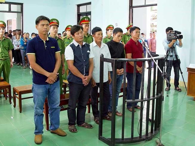 Tòa Tối cao giải trình vụ cưa gỗ khô bị xử tội trộm cắp