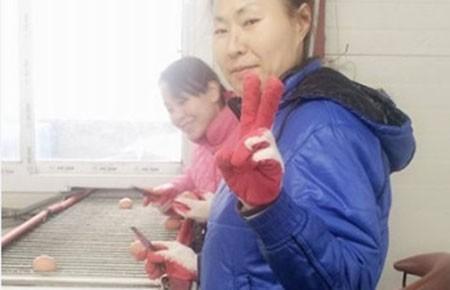 Chống lao động bỏ trốn tại Hàn Quốc