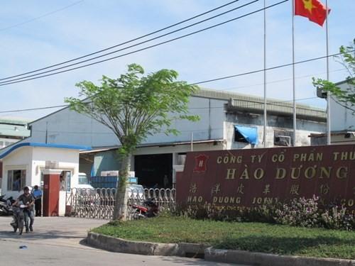Phạt Công ty Hào Dương gần 6,4 tỉ đồng