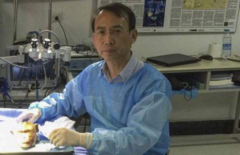 Dấu ấn Trung Quốc trong ca ghép đầu người