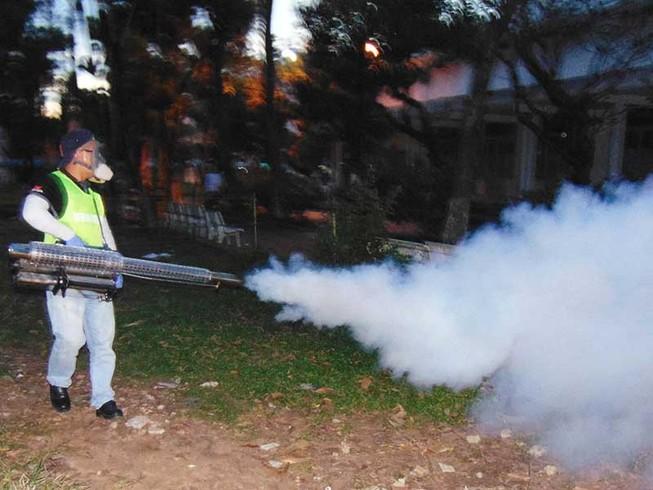 TP.HCM: Hơn 11.800 điểm nguy cơ sốt xuất huyết lẫn Zika
