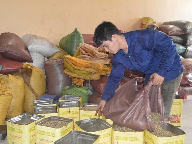 Lao đao vì tiếng oan 'sản xuất cà phê giả, bẩn'