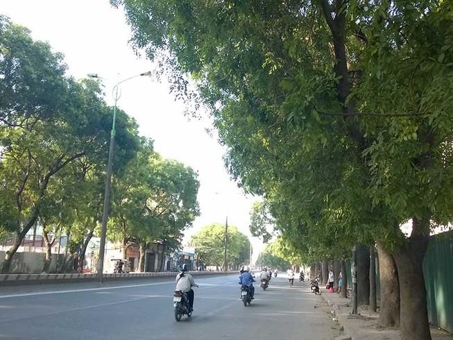 Hà Nội không chặt 1.300 cây ở đường Phạm Văn Đồng