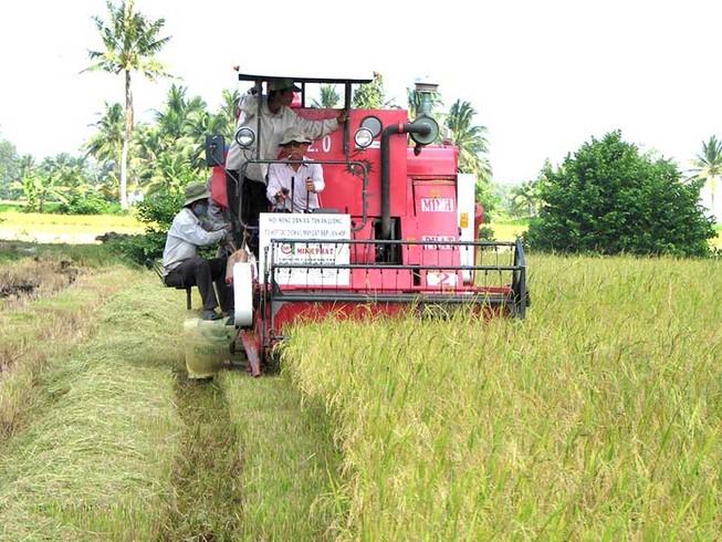 Bài toán 'nông nghiệp thông minh' cho miền Tây
