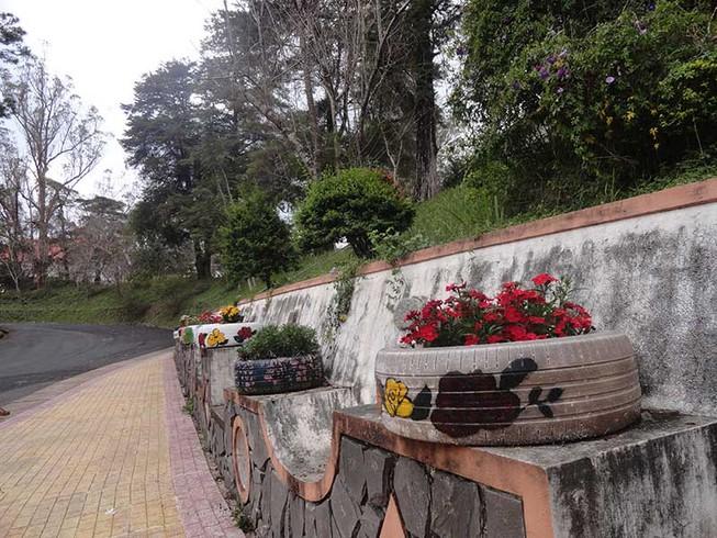 Đà Lạt: Vỏ xe hỏng thành bồn hoa