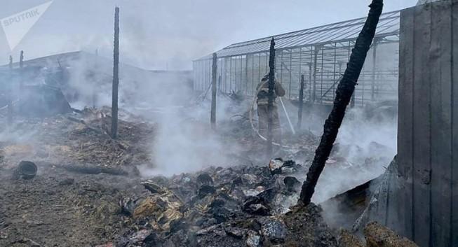 Vụ cháy ở Nga: Ít nhất 1 người Việt gặp nạn