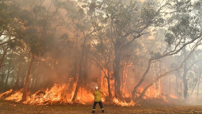 Nóng kỷ lục, Úc tuyên bố tình trạng khẩn cấp