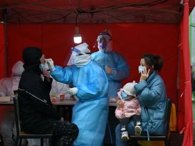 Trung Quốc phát hiện một số ca nhiễm COVID-19 từ đầu heo